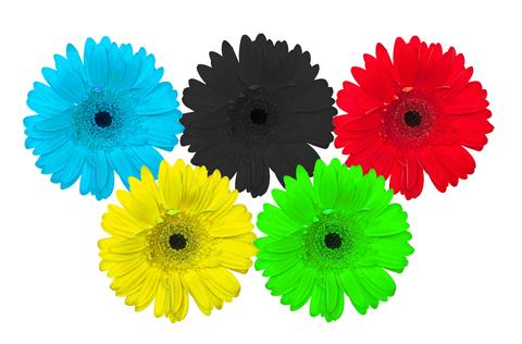 Kleur en vorm. Opleiding Colourprofessionals